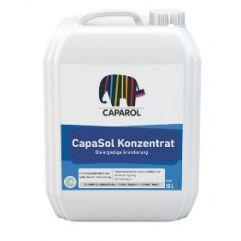 CAPASOL LF KONZENTRAT  10lit