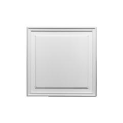 D503 ORAC LUXXUS door panel 55 x 1,7 x 55