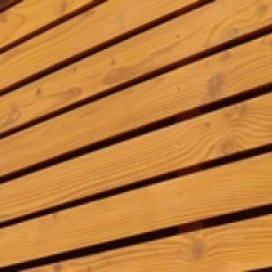 Zaštita drva